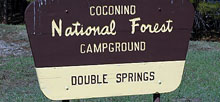 Double Springs