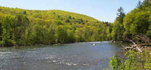 Housatonic Meadows State Park