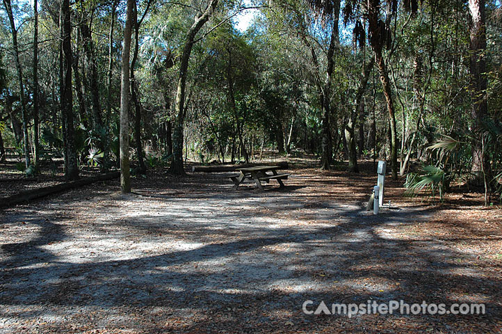 Hillsborough River State Park 043